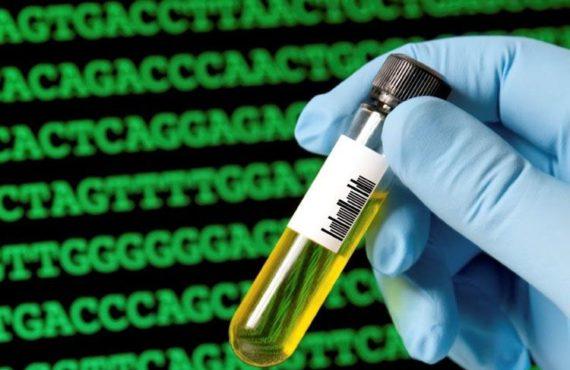 Biología sintética y reprogramación celular