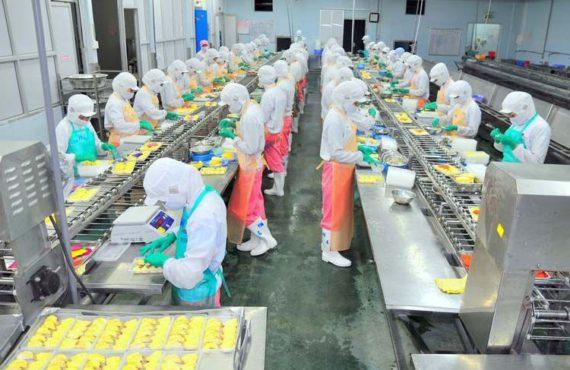 Embalajes farmacéuticos y la innovación en su fabricación